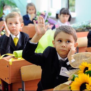 Школы Хохольского