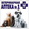 Ветеринарные аптеки в Хохольском