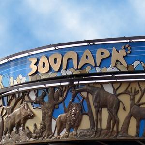 Зоопарки Хохольского